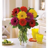 Gerbera Delight Bouquet Any Occasion