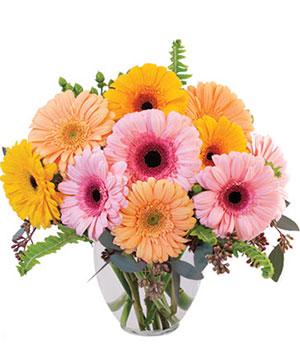 Gerbera Dreams Floral Design in Norway, ME | Green Gardens Florist & Gift Shop