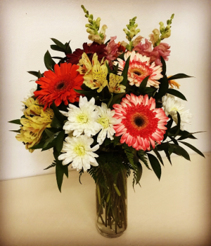 Gerbera  Gerbera Daises and Mix in Plainview, TX | Kan Del's Floral, Candles & Gifts