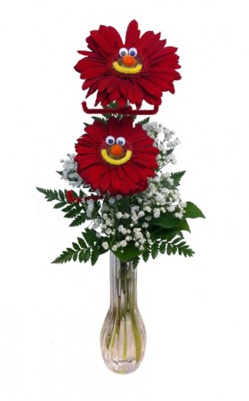 Gerbera Girl/Guy Vase Arrangement