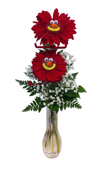 Gerbera Girl/Guy Vase Arrangement