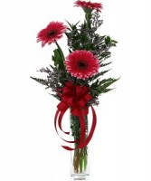Gerberas Make You Smile Bud Vase