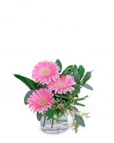 Gerbera Simplicity Flower Arrangement