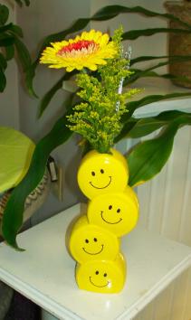 Gerbera Smiles