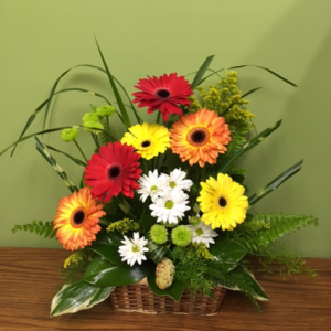 GERBERA SURPRISE  in Porter, OK | Happy Bee Flowers & Gifts