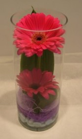 GERBS IN CYLINDER Vase Arrangement