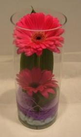 GERBS IN CYLINDER Vase Arrangement