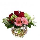 Gerbs & Roses