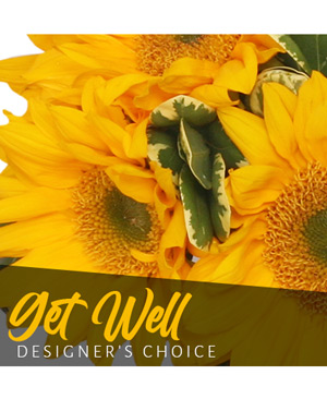 Get Well Bouquet Designer's Choice in Kensington, MD | Petals To The Metal Florist LLC