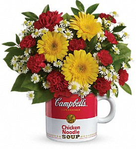Get Well* Campbell's Healthy Wishes TEV51-1A  in Fort Worth, TX | DAVIS FLORAL DESIGNS