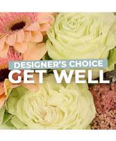 Get Well Florals Designer's Choice in Henderson, Texas | Wild Iris Florist & Fine Gifts