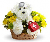 Doggie Doctor Get Well Flower Delivery