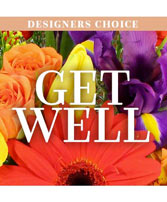 Get Well Flowers Designer's Choice