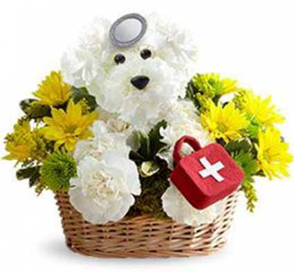 Get Well Dog-Able Floral Delivery