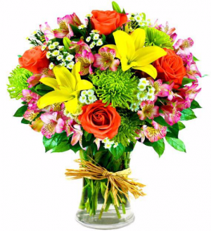 Get Well Hugs Arrangement in Winston Salem, NC | RAE'S NORTH POINT FLORIST INC.
