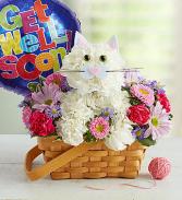 Get Well Kitty Basket Arrangement