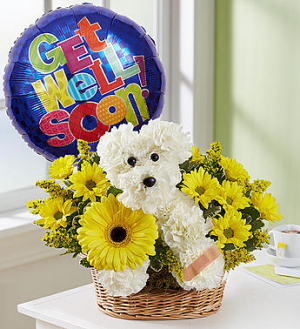 Get Well Puppy Basket Arrangement in Nampa, ID | FLOWERS BY MY MICHELLE