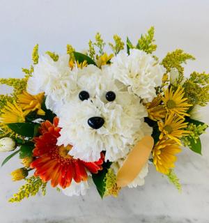 Get well soon   in Tamarac, FL | Yosvi Flowers