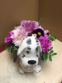 get well soon dog container seasonal flowers