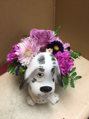 get well soon dog container seasonal flowers in Celina, TX | Celina Flowers & Gifts