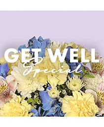 Get Well Special Designer's Choice