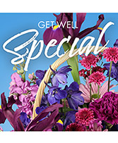 Get Well Special Florals Designer's Choice in Croton On Hudson, New York | Cooke's Little Shoppe Of Flowers
