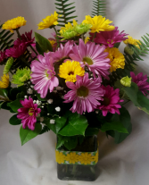 """Colorful Daisy Bouquet""...purple, lavender,  Yellow with lime green poms all arranged in a cute ribbon detailed rectangular vase with filler!"