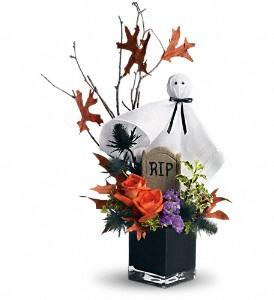 Ghostly GardensT176-1A