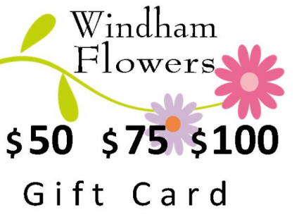 Gift Card $50 $75 or $100 Gift Certificate
