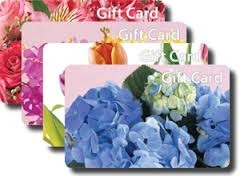 Gift Card gift in Davis, CA | STRELITZIA FLOWER CO.