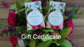 GIFT CERTIFICATE 35.00 55.00 75.00