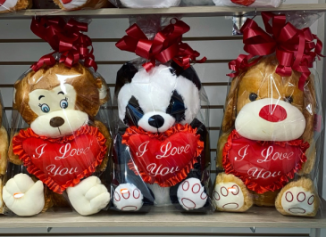 GIFT-TEDDIES Valentine's Day And Special's Day