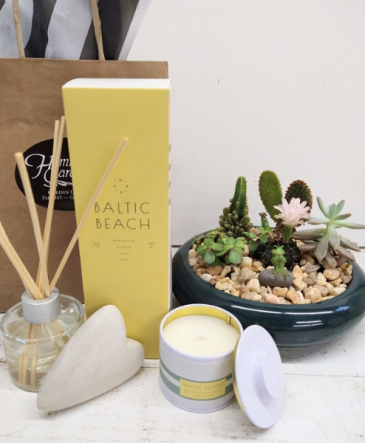 Gifts for Mom- Illume Baltic Beach & Succulent GRD