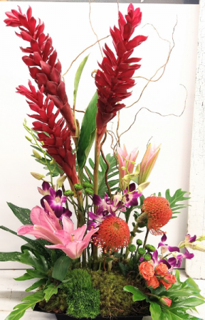 Ginger and Orchid Explosion Arrangement