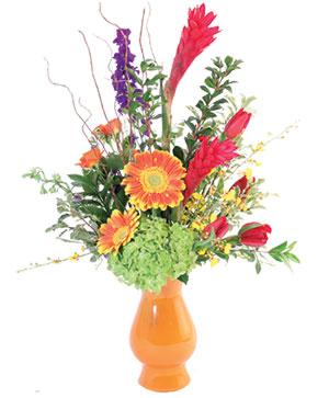 Ginger's Orchid Dream Floral Design in Killeen, TX | MARVEL'S FLOWERS