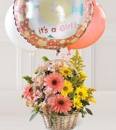 Welcome Baby Girl Baby Arrangement