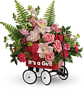 Girl's Red Wagon