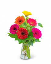 Gleeful Gerbera Flower Arrangement