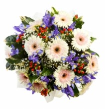 """BUCKETS""Gleeful Gerbera Mix Bouquet"