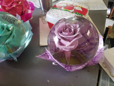 globe rose globe rose