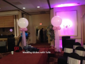 Globes with Tulle