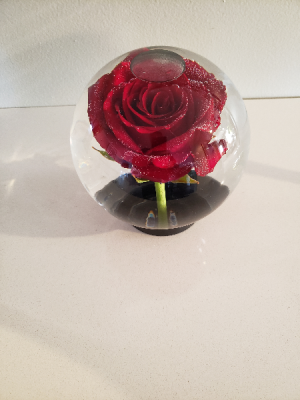 Global Rose   in Galloway, NJ | GALLOWAY FLORIST INC.