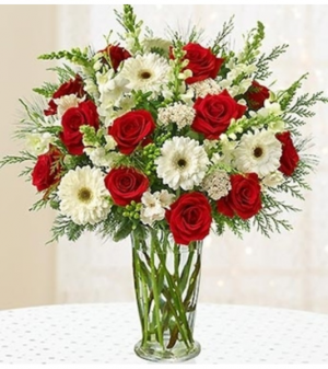 Glorious Christmas™ '18 Arrangement in Croton On Hudson, NY   Cooke's Little Shoppe Of Flowers