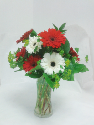 Glorious Gerberas  in Tottenham, ON | TOTTENHAM FLOWERS & GIFTS
