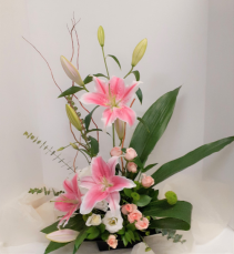 Glorious Pink Lilies