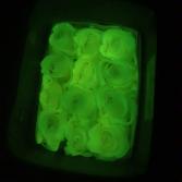 Glow In The Dark ROSES!