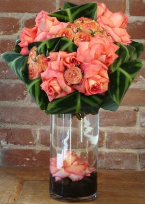 GLOW   Latina  in East York, ON   FETE BOUTIQUE FLORAL + EVENTS/ VAN BASSEN FLOWERS