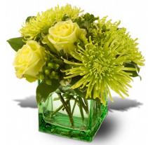 Go Green Vase