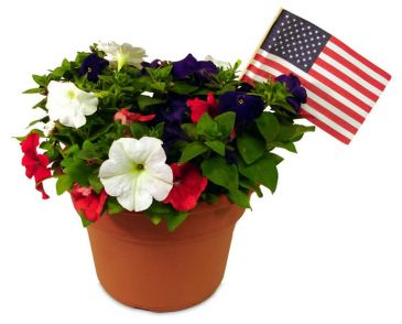 God Bless America Red White and Blue Color Bowl