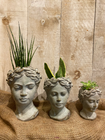 Goddess Heads planters